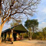 Bomani guest tent